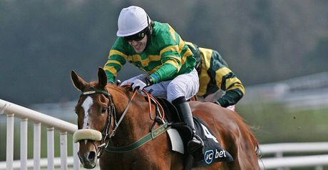 Jered - cut for Champion Hurdle.