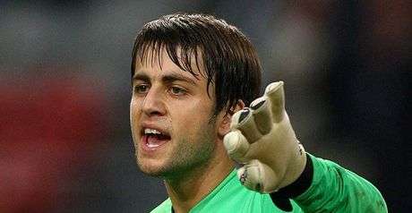 Fabianski: Waiting in the wings