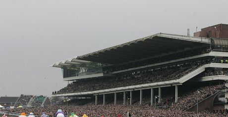 Greatwood Charity Race at Cheltenham on Friday
