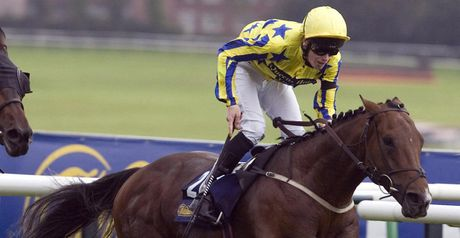 Kaldoun Kingdom - winner at York.
