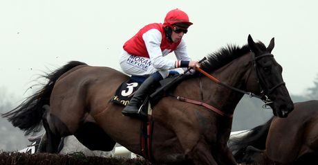 Joncol: May run in the Hennessy Gold Cup