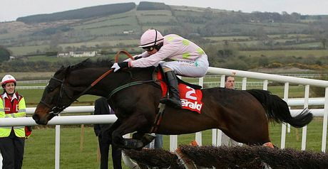 Blackstairmountain - Punchestown winner.