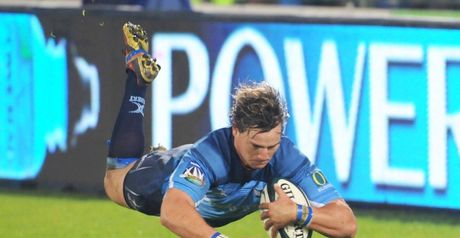 Potgieter: Off to the Sharks