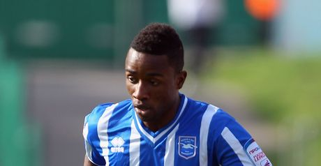 LuaLua: Poised to join newly-promoted Brighton for a third time