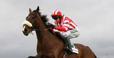 Forpadydeplasterer: Punchestown return