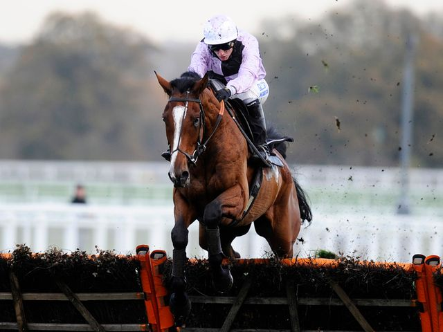 Megastar: Tipped to win over fences