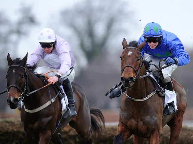 Solwhit (left) has nothing of Hurricane Fly's calibre to fear