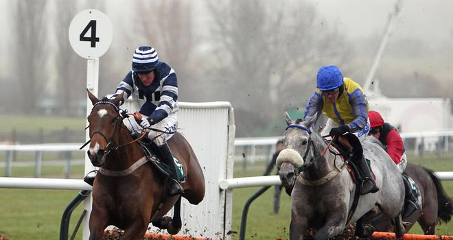 Oscar Whisky (left): Champion Hurdle contender?