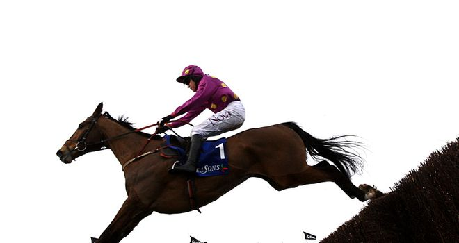 Big Zeb: Won a third Fortria Chase