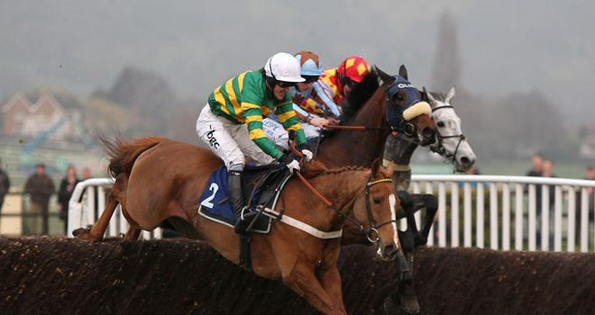 Divers (far side) set for Cheltenham return
