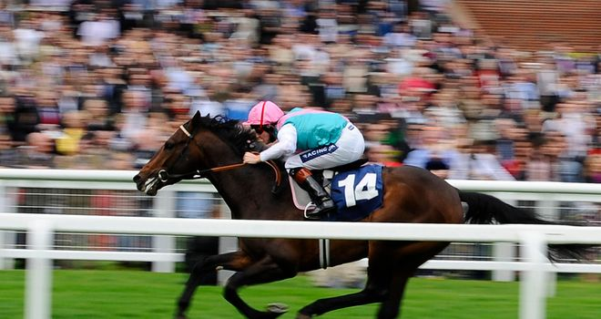 World Domination wins at Newbury