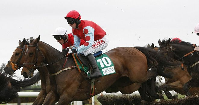 Voler La Vedette: Navan hopeful