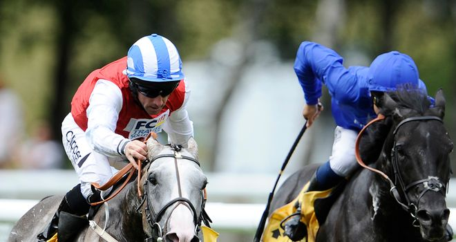 Cavalryman: Beat Calico Cat at York