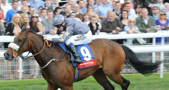 Lexi's Hero: Likely to step up in class following York win