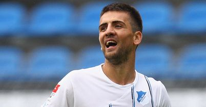 Vedad Ibisevic: Came close to joining to Blackburn over the summer