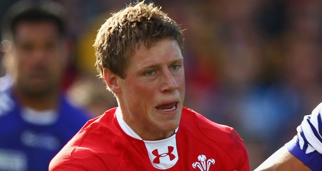 Rhys Priestland: Wales fly-half has sympathy for Dan Parks