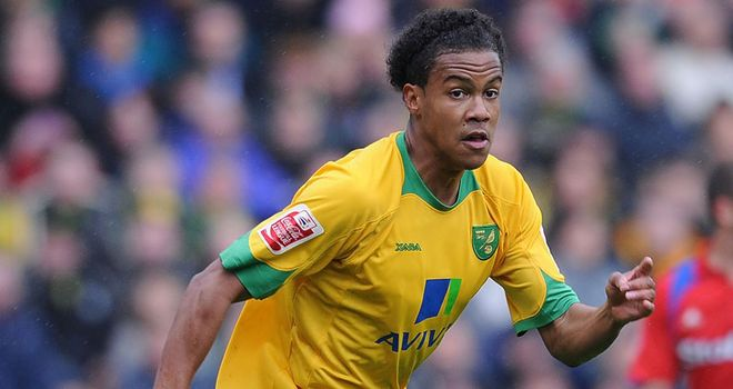 Johnson: Striker is set to undertake a second loan spell with Yeovil Town