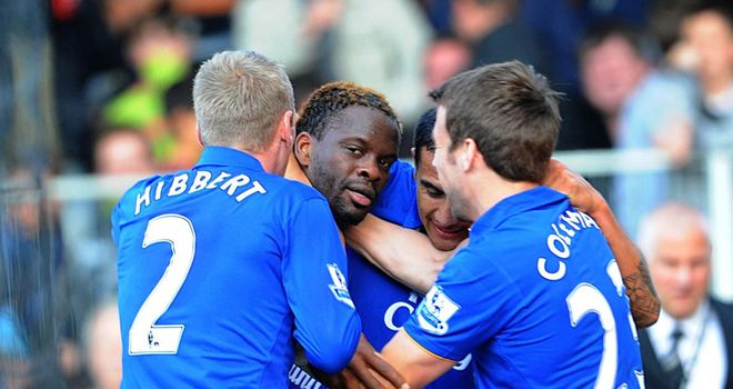 Louis Saha: Everton striker has been challenged to improve in the second half of the season