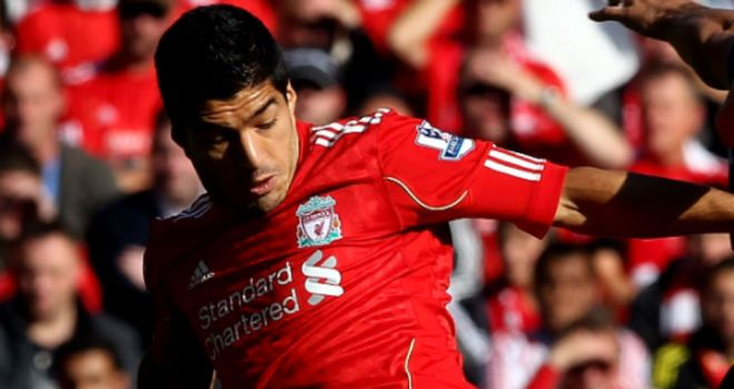 Luis Suarez: Liverpool manager Kenny Dalglish has given his support to the Uruguay striker