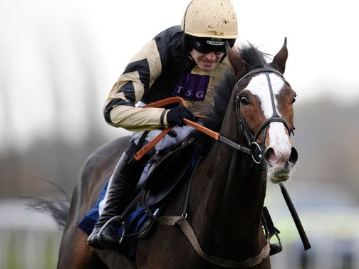 Prospect Wells: Winner of National Spirit Hurdle at Fontwell