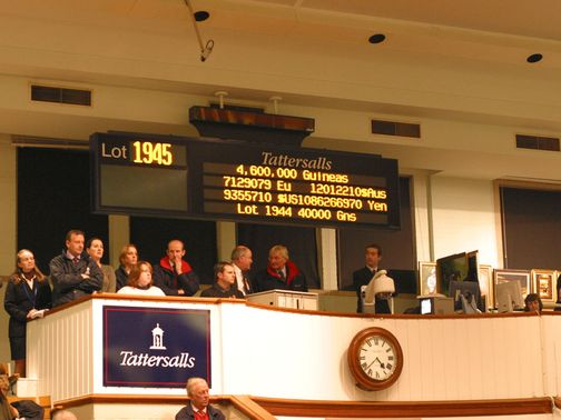 The action is underway at Tattersalls in Newmarket (www.tattersalls.com)