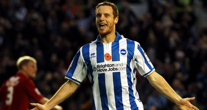 Ryan Harley: Has struggled to make an impact at Brighton