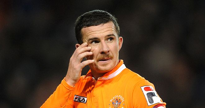 Ferguson: the Scot plays an instrumental role for Blackpool