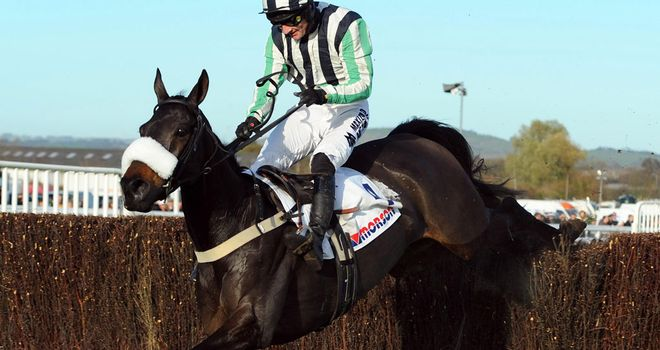 Midnight Chase: Set for Cheltenham return