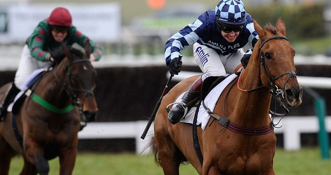 Richard Johnson rides Wishfull Thinking to victory in The Murphy Group Steeple Chase at Cheltenham in January