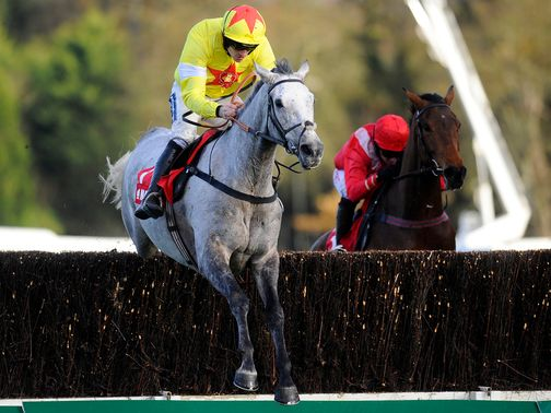 Al Ferof: Paddy Power Gold Cup contender for Paul Nicholls
