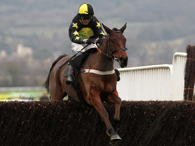Cannington Brook: Had a hard race at Ffos Las