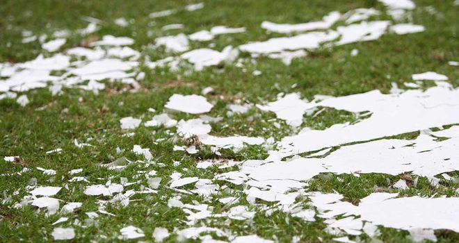 Pitch inspection: Game in doubt