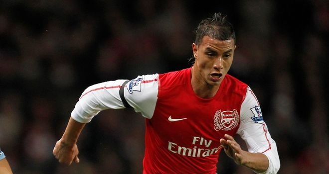 Marouane Chamakh: The striker has scored just once for Arsenal this season and may leave in the summer