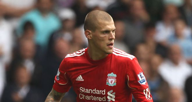 Martin Skrtel: Premier League champions Manchester City are reported to want the centre-back