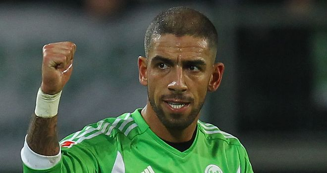 Ashkan Dejagah: Convinced to join Fulham by the 'project' of Martin Jol