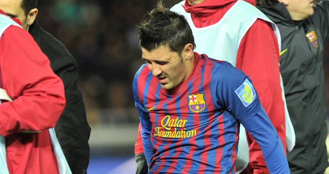 David Villa: The 30-year-old Barecelona striker has been out for eight months with a broken leg