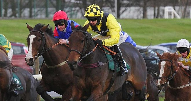 Featherbed Lane: Potential World Hurdle bid if he wins at Haydock on Saturday