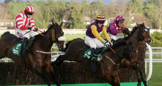 Noble Prince: Set to reappear at Aintree at the weekend
