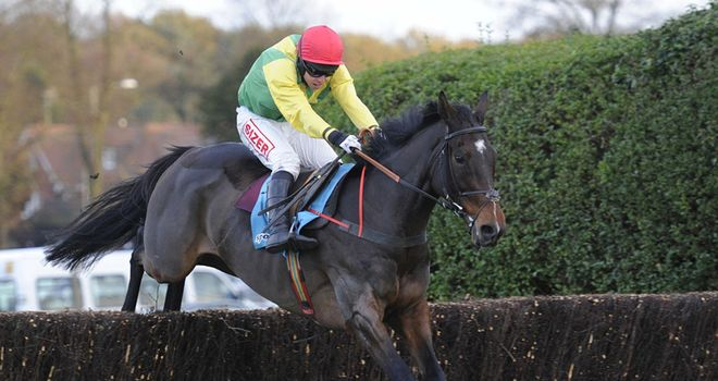 Sizing Europe: Tingle Creek winner