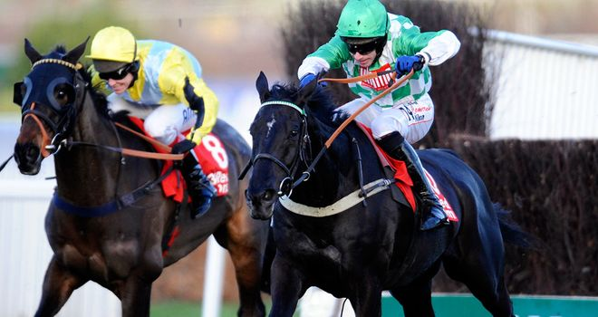 Hold On Julio: Will be aimed at the Aintree Grand National