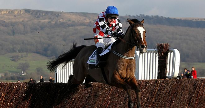 The Giant Bolster: 'He's a lot stronger than last year'