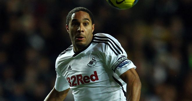 Ashley Williams: Hailed as 'invaluable' by Swansea boss Brendan Rodgers