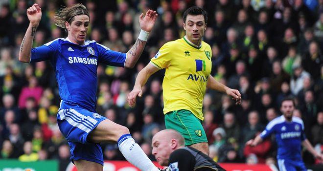 Fernando Torres: Andre Villas-Boas should back the misfiring forward 100 per cent