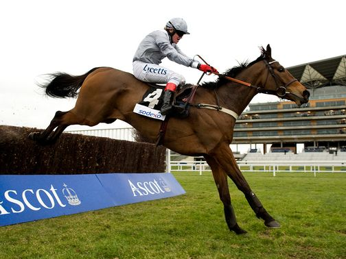 Invictus: Ruled out for the whole National Hunt season