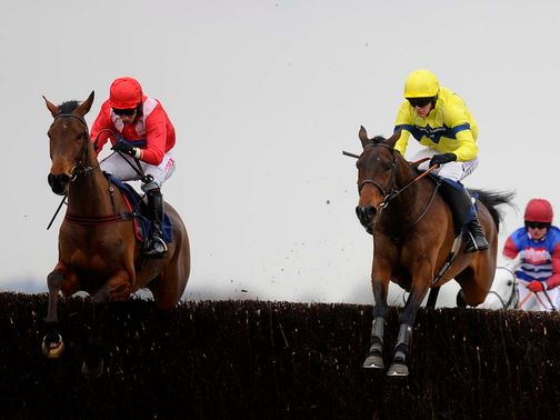 Micheal Flips (right): Worth a bet at Newbury