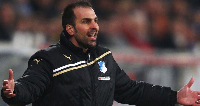 Markus Babbel: Hoffenheim coach wants to improve his squad this summer
