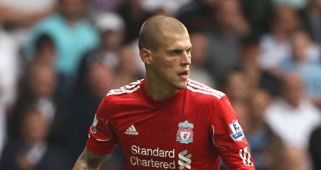 Martin Skrtel: Still has two years left to run on his contract at Liverpool