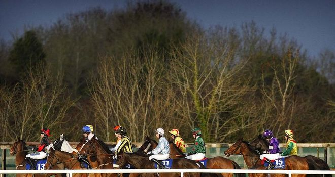 Fairyhouse: Stages competitive Saturday card
