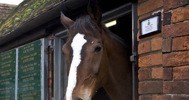 Kauto Star: In good form