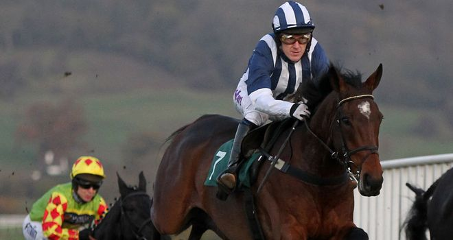 Teaforthree: Set to take his chance in the Welsh National